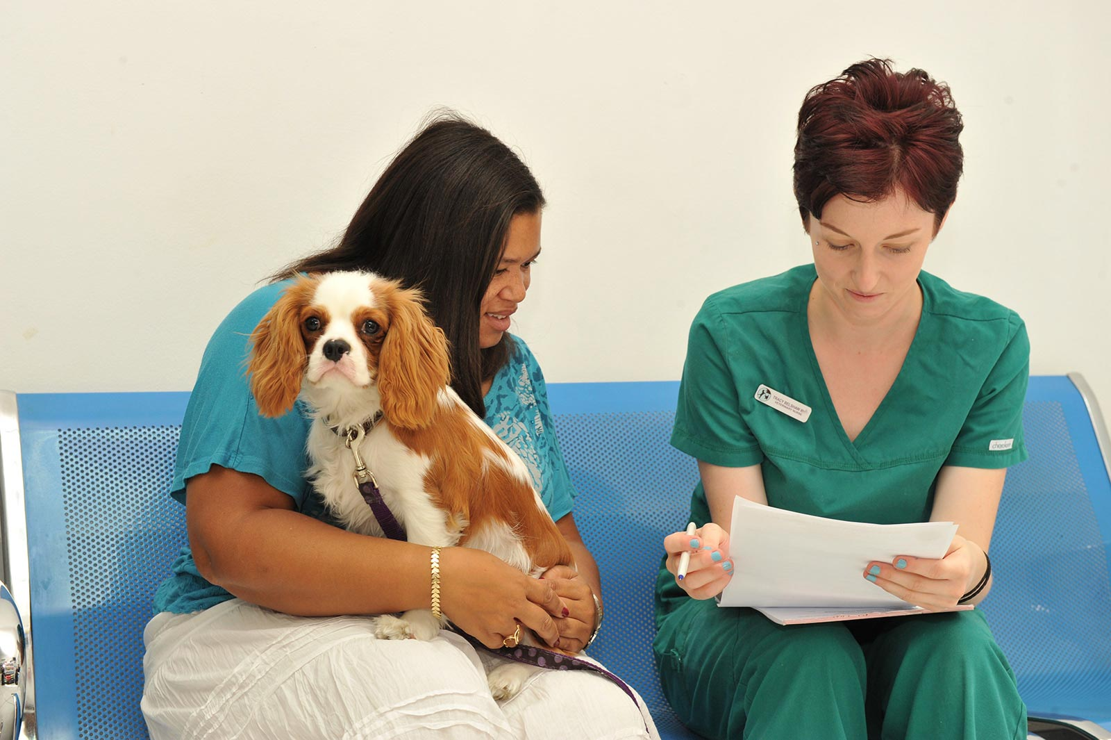 Admissions-procedure-with-Tracy-Belshaw-RVN