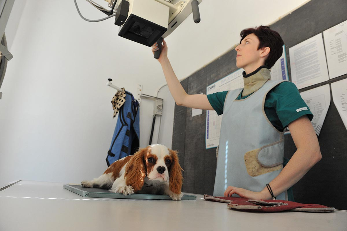 Tracy-and-Xray-patient