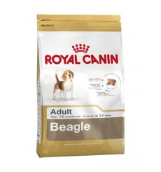 breed-health-nutrition-beagle-adult-3-kg