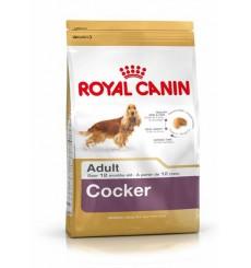 breed-health-nutrition-cocker-3-kg
