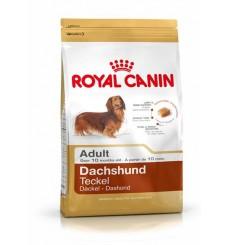 breed-health-nutrition-dachshund-adult-1-5-kg