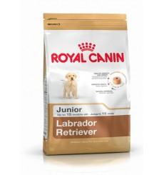 breed-health-nutrition-labrador-junior-12-kg