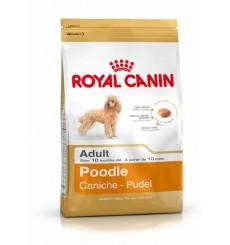 breed-health-nutrition-poodle-1-5-kg