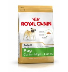 breed-health-nutrition-pug-1-5-kg