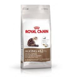 feline-health-nutrition-ageing-12-years